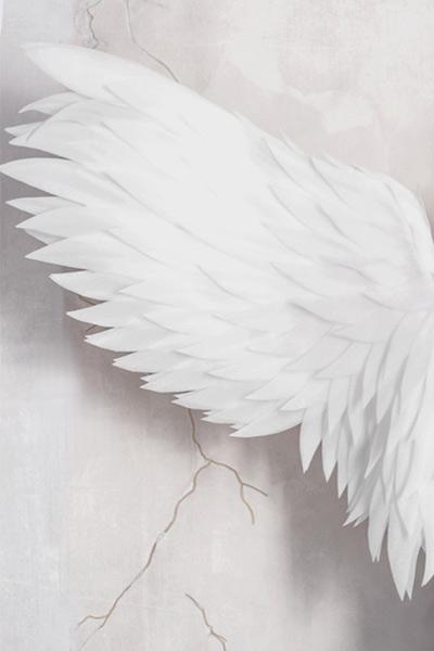 Foto für Angel Touch